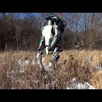 Jönnek a humanoid robotok
