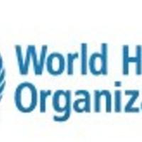 Webicina a WHO jelentésében