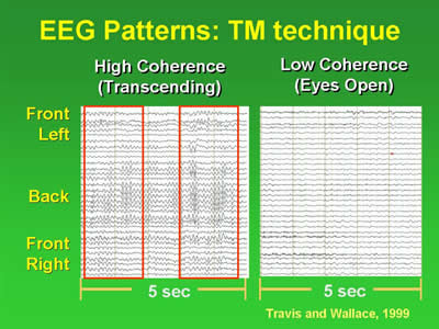 TM-agy8.jpg