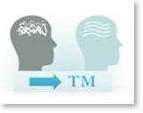 Tm-Diagram3.png