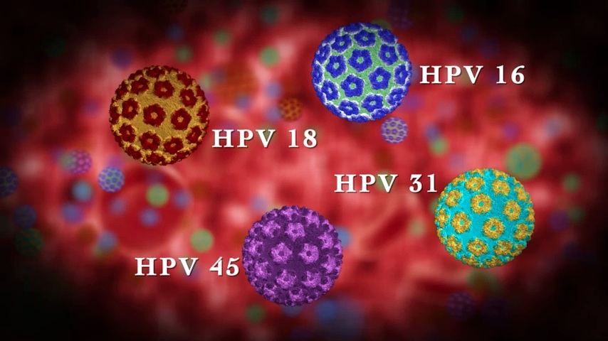 humán 16-as típusú papillomavírus integrációjának kimutatása)