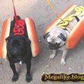 Hotdog :)