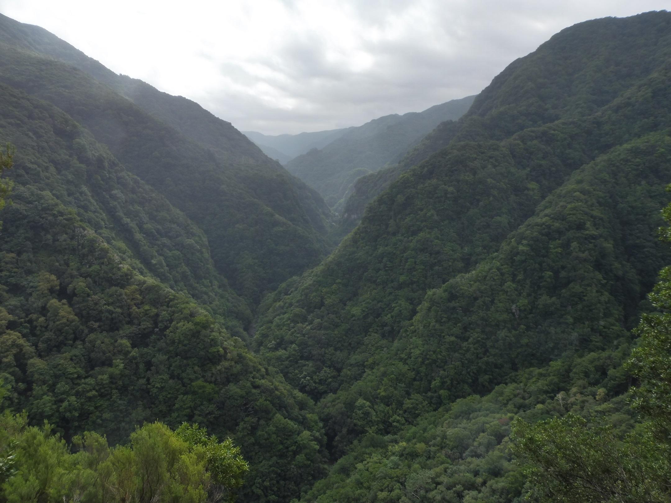 Ribeira da Janela völgy