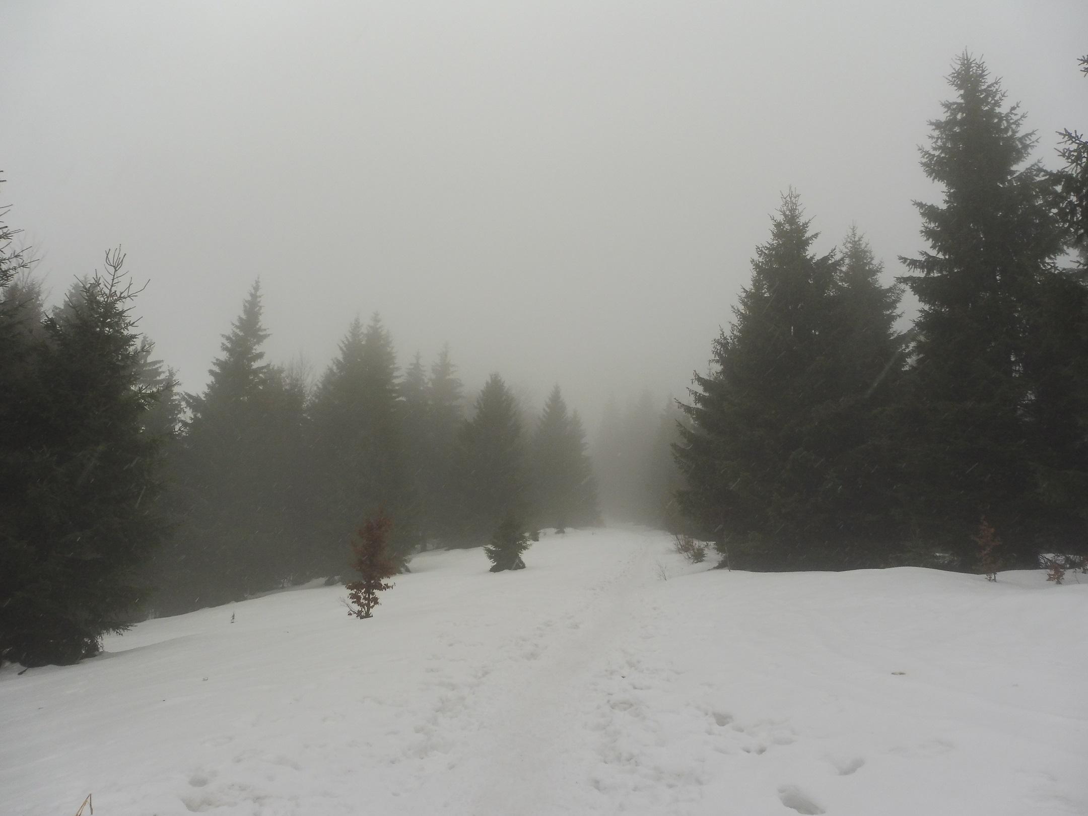 Vágkelecsény - Chata pod Klacianskou Magurou zöld turistaút