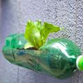 Ne csak virágcserép legyen a palackból!