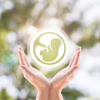 Egy új élet teremtése – 8+1 vitamin és ásványi anyag, ami hatással van a baba és a kismama egészségére