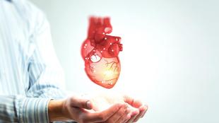 Melyek a leggyakoribb szív- és érrendszeri betegségek? Ismerje fel a tüneteket, és lépjen gyorsan!