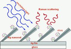 Nanoszálas jelerősítés lézeres vírusazonosításhoz