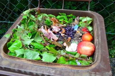 Élelmiszer hulladék