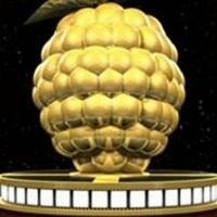 A 2012-es Arany Málna-díj jelöltjei