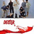 Dexter 1. évad - évadértékelő