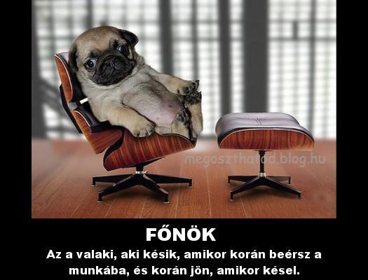 mia a főnök fogyás)