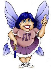 flylady