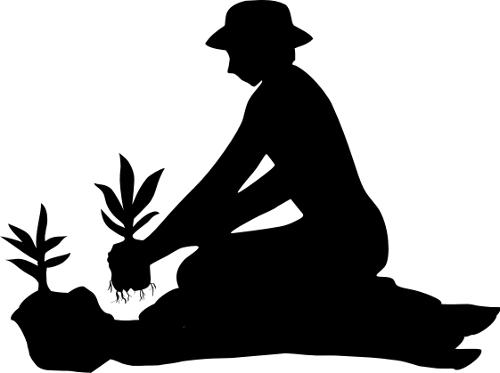 kertészlány