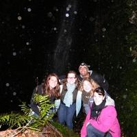 Éjszakai vízesés- és Glow-worms túra
