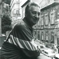 Magyar, meleg, forradalmár