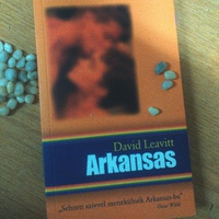 David Leavitt: Arkansas