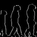 Darwin mélyütése egy populistának