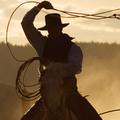 Politika a filmvásznon: a kisebbségi kérdés és a western