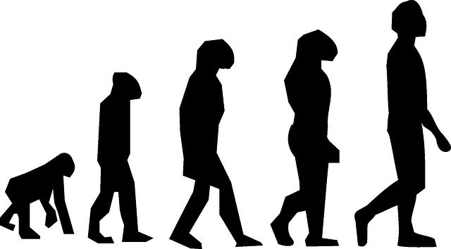 evolution-297234_640.png