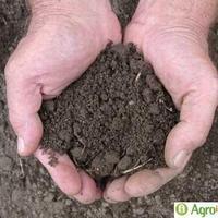 Megmaradásunk záloga a termőföld