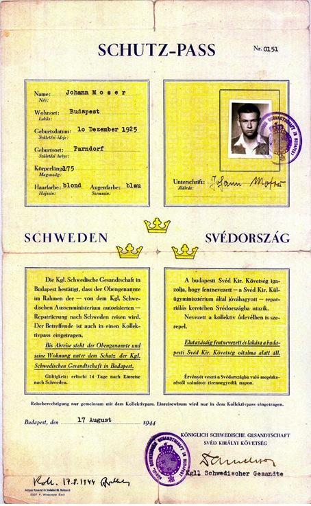 schutz-pass-stor.jpg