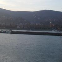 Pillanatkép a Budapesti hajóforgalomról