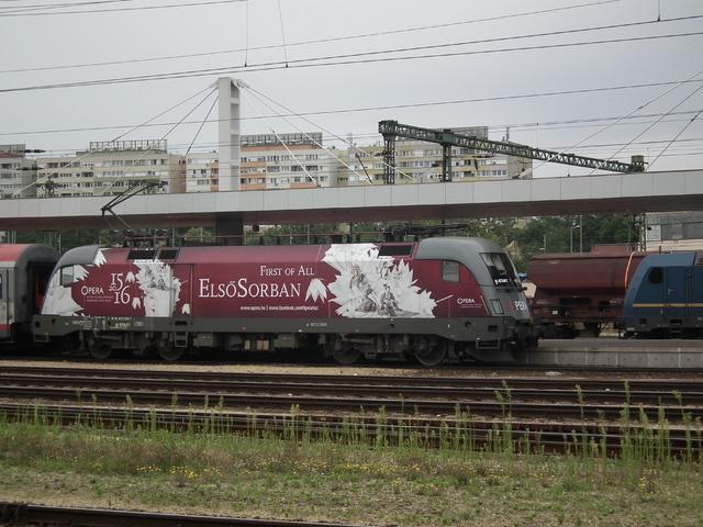 Kelenföldi vonat mustra