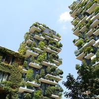 Hohó! Vertikális erdőt építenek Újpesten!