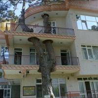 Így él együtt az ember és a természetet