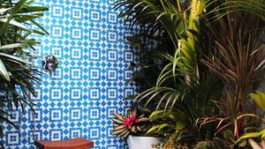 Hogyan használjuk a kék színt és a növényeket a fürdőszobában?