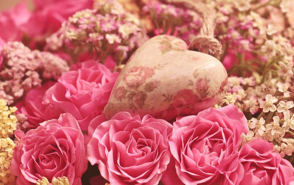 roses-3699995_960_720.jpg