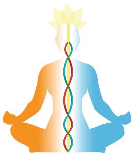 nasal_cycle_yoga.png