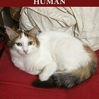 ?READ? How To Train Your Human. bateria ofrece Envio forced obtained tells Academic