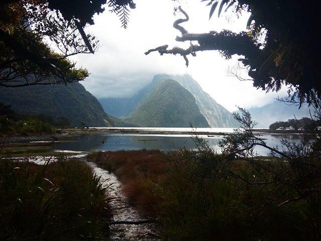 #mertutaznijo #eupolisz #milfordsound #landscape #paradise #newzealand #teanau #frame #travelling #travelphotography