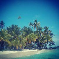 Uninhabited island somewhere in the Caribbean.  #mertutaznijo #eupolisz #caribbean #island #uninhabited #sea #sun #sand #beach #lonely #clearwater #palm @reni.atesz