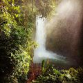 Egy kis trópusi idill. Tropical idyll. #mertutaznijo #eupolisz #costarica #puravida #centroamerica #lapaz #waterfall #jungle #river #peace