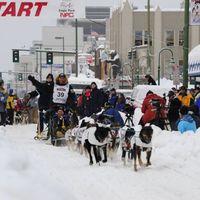 A világ egyik legdurvább versenye, Iditarod.