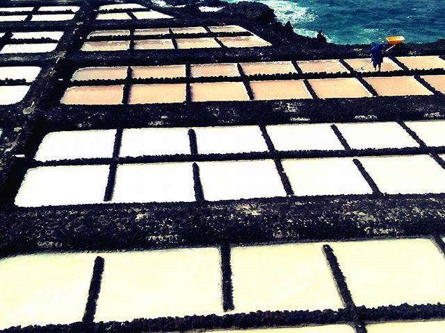 Így szüretelik a sót. This is how the salt harvested. @reni.atesz #mertutaznijo #canarias #lapalma #salt #travelphotography #travel #eupolisz