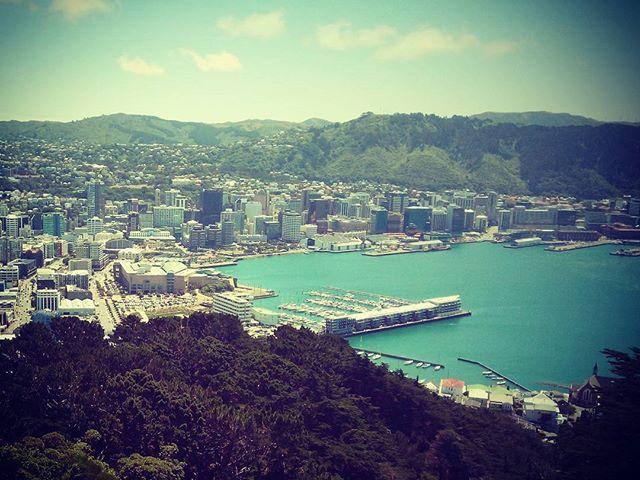 Wellington, Új-Zéland fővárosa egy szerethető kisváros. #mertutaznijo #eupolisz #újzéland #wellington #harbour