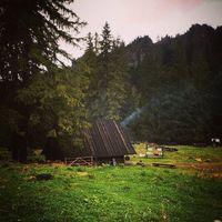 Mesebeli házikó. Fairytale house. #mertutaznijo #lengyelország #tátra #forrest #erdő #travelphoto #trekking #travel #vysokétatry