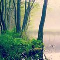 #mertutaznijo #travelphotography #travel #hungary #szilvasvarad #wet #bükk