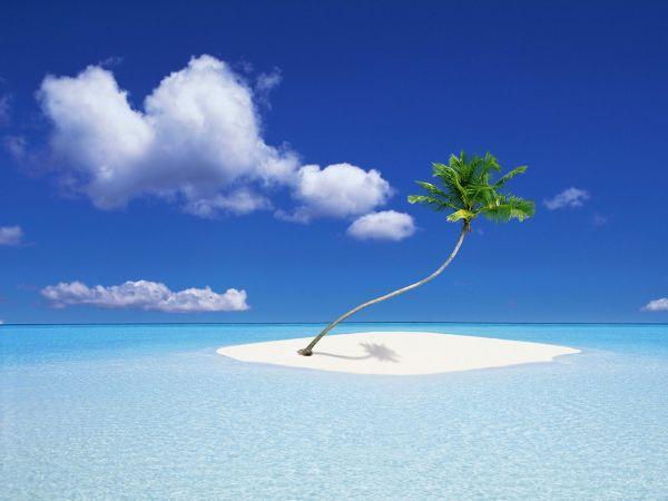 Island_Bounty.jpg
