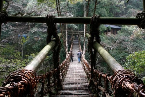 Musou-Tsuribashi-bridge-1.jpg