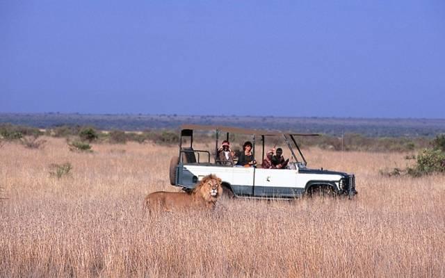 loisaba_safari_2533262k.jpg