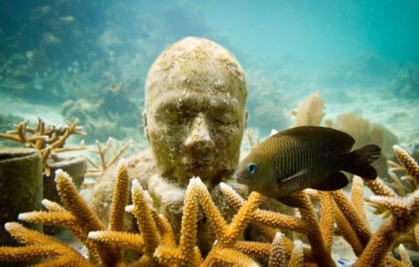 the-cancun-underwater-museum.jpg
