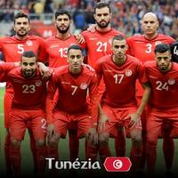 Afrika VB-csapatok - Tunézia