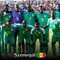Afrikai VB-csapatok - Szenegál