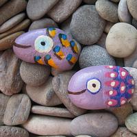 Lila halak / Lilac Fish