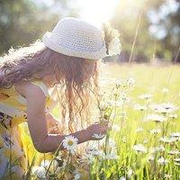 A kisvirág, aki világot akart látni (Tábori levelek #6)